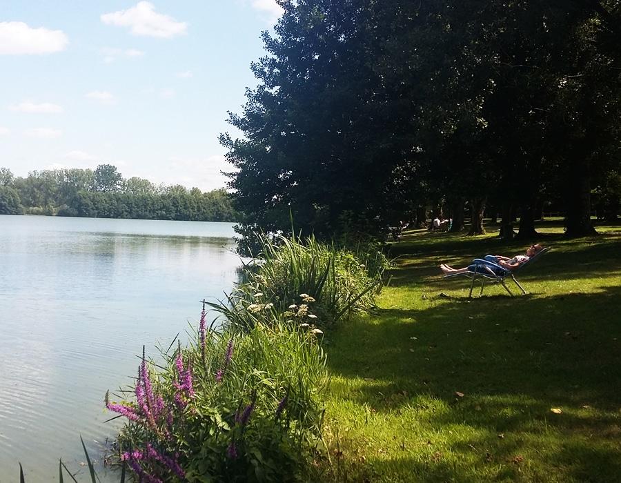detente-au-bord-du-lac-des-effres-camping-secondigny