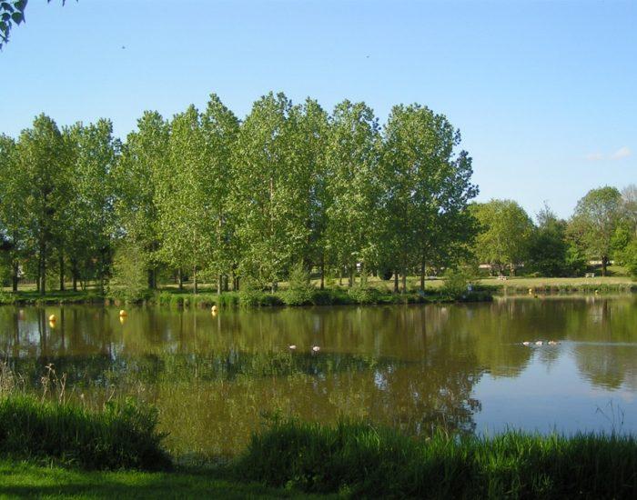 camping-le-moulin-des-effres-nature-arbre-verdure
